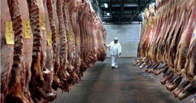 La exportación de carne vacuna aumentó un 34% en 2017